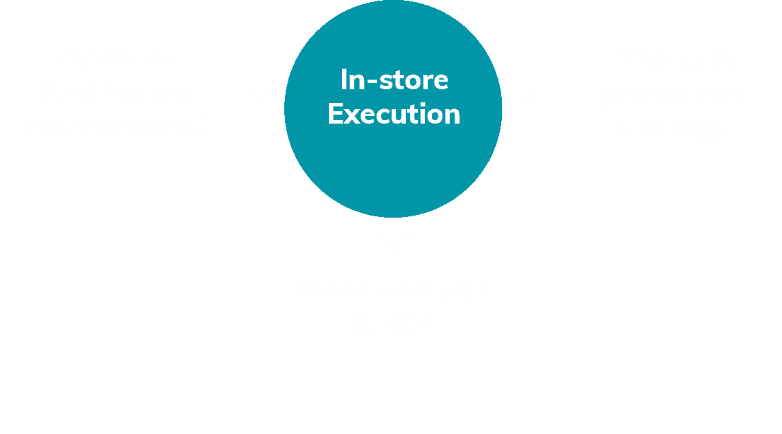 Account & category management + Pricing & promotion strategy = In-store Execution = Sales analysis & ROI